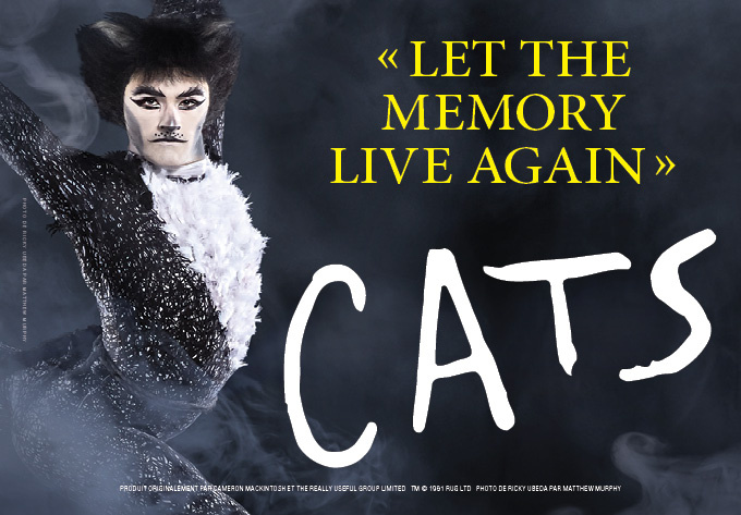 Cats - March 17, 2020, Montreal